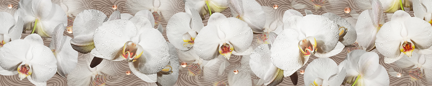 Скинали для кухни цветы орхидеи фото готовые работы